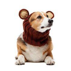 Knit Dog Hat Zoo Snood - Bear