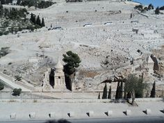 Thousands of graves next to the Mount of Olives. Jerusalem 2010....R Salinas.