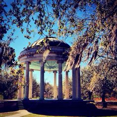 New Orleans City Park...Looks like a Maxfield Parrish painting in this light!