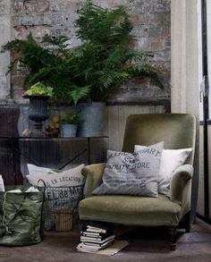 Soft textures, pillows and ferns