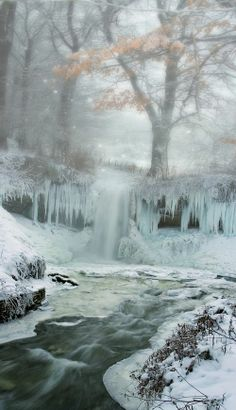 ☮ * ° ♥ ˚ℒℴѵℯ cjf I Love Snow, I Love Winter, Winter Christmas, Winter Snow, Winter Photography, Landscape Photography, Photography Tips, Winter Scenery, Winter Trees