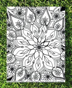 Mandala Coloring Floral Ornate Hand Illustrated Page Botanical Download Adult
