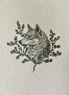 Animal Drawings, Art Drawings, Wolf Illustration, Arte Sketchbook, Watercolor And Ink, Aesthetic Art, Art Inspo, Painting & Drawing, Art Reference