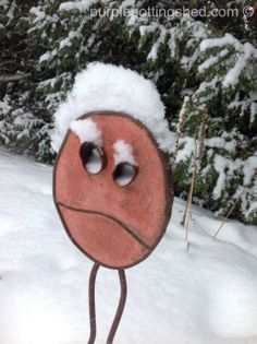 Snow face, www.purplepottingshed.com