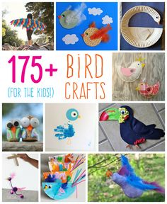 There are plenty of fun and colorful bird crafts for kids to make. There's also a learning opportunity here. Birds are an essential part in the ecosystem.