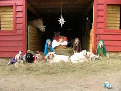 Pretty cute manger scene here...