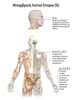 Body Therapy, Dear God, Pain Relief, Kai, Anatomy, Health Fitness, Statue, Fitness, Sculptures
