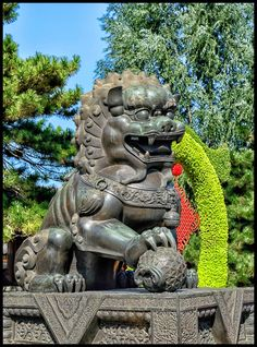 Lion in Forbidden City (Beijing China)