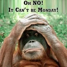 Can't be Monday!