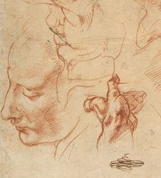 Michelangelo Buonarroti: Studies for the Libyan Sibyl (recto); Studies for the Libyan Sibyl and a Small Sketch for a Seated Figure (verso) (24.197.2) | Heilbrunn Timeline of Art History | The Metropolitan Museum of Art