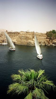 Felucca and the Nile river, Egypt !!| Flickr - Photo Sharing!