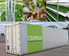 Farm in a box produces an acre's worth of crops in a shipping container—CropBox shipping container farm