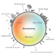 bioeconomy - health and nutrition research