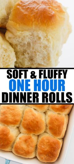 This is the only dinner roll recipe you'll ever need! Soft, fluffy, and buttery rolls made in just one hour. | www.persnicketyplates.com #dinnerrolls #easyrecipe #sidedish #breadrecipe Buttery Rolls, Dinner Rolls Recipe, Muffin Bread, Food Plating, Bread Recipes, Slow Cooker, Muffins, Easy Meals, Appetizers