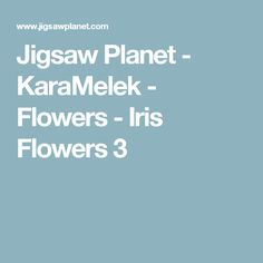 Jigsaw Planet - KaraMelek - Flowers - Iris Flowers 3