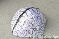 Highhill Homeschool: Human Body Unit - Brain