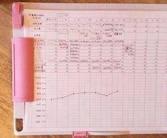 毎日書く家計簿と月1回1行貯金簿の比較(勉強編) │ ずぼら節約主婦hanaの袋分けファイル家計簿管理ブログ