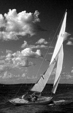 Things: Love sailing the QA 17