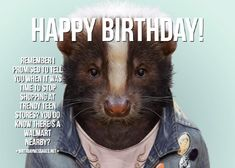 Funny Birthday Wishes & Funny Birthday Quotes: Funny Birthday Messages Funny Birthday Message, Happy Birthday Wishes Messages, Birthday Wishes For Friend, Birthday Wishes Quotes, Birthday Toast, Birthday Poems, It's Your Birthday, Happy Birthday Cards, Silk Knickers