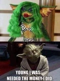 35 Pics and Memes to Delight Your Life - Star Wars Funny - Funny Star Wars Meme - - 35 Pics and Memes to Delight Your Life The post 35 Pics and Memes to Delight Your Life appeared first on Gag Dad. Star Wars Witze, Star Wars Jokes, Funny Star Wars, Funny Love, Funny Kids, Animal Memes, Funny Animals, Memes Super Graciosos, Image Memes