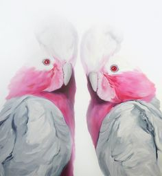 Two Cockatoos, 2009, Oil on Canvas, 52 X 48; by leilacartier.com