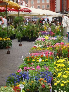 Flower Market, Wurzburg, Germany...one of my favorite places there