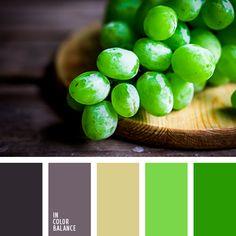 бледно-фиолетовый, зеленый и фиолетовый, малахитовый цвет, нефритовый цвет, оттенки зеленого, оттенки фиолетового, салатовый, светло-пурпурный цвет, фиолетовый, цвет зелени, цвет зеленого винограда, цвет зеленого гороха, цвет зеленого горошка,