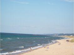 saugatuck michigan | Spectacular Oval Beach: Saugatuck, Michigan