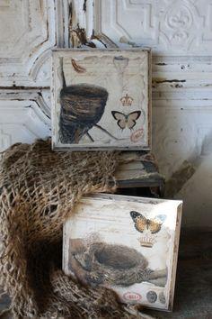 Vintage bird prints from Save-on-Crafts.com