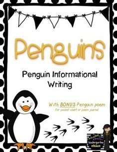 Penguin Report for L
