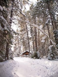 Kenora, Ontario! Longbow, O Canada, Winter Wonder, Lake Life, Countries Of The World, Vernon, Winter Snow, Amazing Nature, Ontario