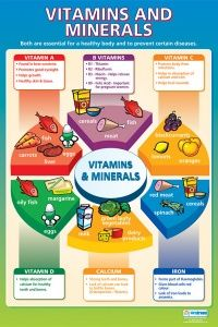 Vitamins must be synthesized in order to be used by the body; therefore, it is essential that you know how vitamins and minerals react with one another. For instance, iron is not absorbed as well when calcium is present. When you take an iron supplement, you should avoid calcium supplements, antacids, and dairy products for half an hour before or after. If you are planning on taking any... FULL ARTICLE @ http://www.101vitamins-minerals.com/vitamins-what-you-should-know-before-you-begin/
