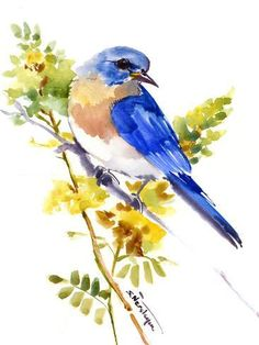 Eastern Bluebird Original watercolor painting Bird watching bird watching gift birds bird art bird painting bluebird artwork birds by ORIGINALONLY on Etsy Watercolor Bird, Watercolor Paintings, Watercolor Portraits, Watercolor Landscape, Abstract Paintings, Bird Watching Gifts, Blue Bird Art, Bird Drawings, Pictures To Paint