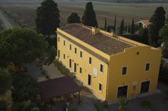 Typical Tuscan farmhouse (restaurant, office and private apartment).
