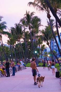 Your must-read guide for enjoying the South Beach Miami nightlife on the cheap, including all the best beaches and how to get into the hottest clubs! Miami Beach Nightlife, South Beach Miami, Miami Florida, Beach Aesthetic, City Aesthetic, Summer Aesthetic, Aesthetic Fashion, Spring Break Miami, Miami Springs