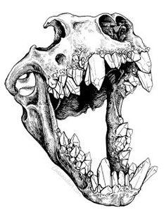 Calavera de gato con dientes de cristal. ¡BANG! LOVE IT.