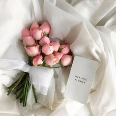 4 Reasons for Being Denied a Credit Card Consumers are often bombarded with credit card offers. Fresh Flowers, Beautiful Flowers, Fond Design, Foto Still, Flower Shower, No Rain, Flower Aesthetic, Japanese Aesthetic, My Flower