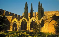 Bellapais Abbey in Northern Cyprus.  0ne of my fav places & where I got married