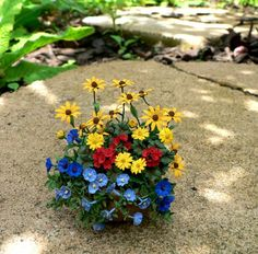 A garden pot with different flowers