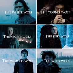 Wolvesss Sansa Stark, Game Of Thrones Meme, Game Of Thones, The North Remembers, Got Memes, Reading Games, Valar Morghulis, Book Tv, Winter Is Coming
