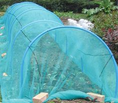 Brassica Netting – against Cabbage White Butterfly Allotment Gardening, Gardening Tips, Allotment Ideas, Vegetable Garden Design, Garden Tools, Garden Ideas, Garden Netting, Farmhouse Garden, Greenhouse Plans