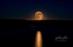 Full Moon Fever - JohnSlotPhotography.com