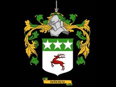 Fun facts and history behind your Irish family name: Doherty (Daugherty). Irish American, Family Roots, Ancestry, Family History, Fun Facts, Ireland, Christmas Ornaments, Awesome