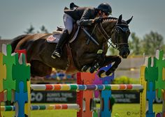 """"""" Puzzle Jump """" - Brian Morton in the jump off over the final oxer the puzzle jump."""