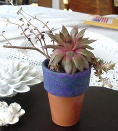 Velvet Purple  Terracotta Indoor Gardening Clay by blueroompottery, $5.50