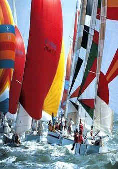 Sailing Adventures                                                       …