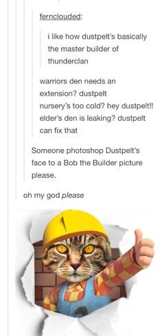 Dustpelt the master builder of ThunderClan--- and Brackenfur is the consulting architect--- I can't stop laughing