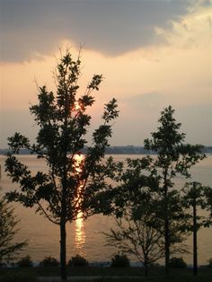 Potomac River photo by Patty Smith Stream Bed, Potomac River, Alexandria, Rivers, Lakes, Fresh Water, Sunsets, Ocean, World