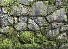 Znalezione obrazy dla zapytania textures stone