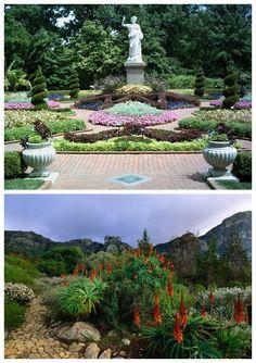 Seychelles National Botanical Gardens Tour
